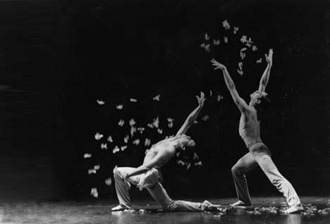 the history of modern dance The history of modern dance early period - 1900 the first three decades embrace the careers of the american dancers isadora duncan and ruth st denis and the german dancer, mary wigman.